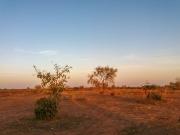 Mali2019-03-072056261200